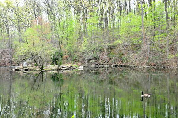 A serene scene at Winkler