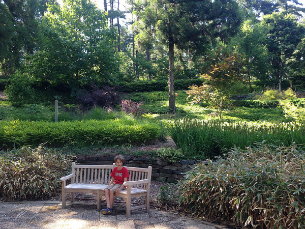 A peaceful moment at the National Arboretum