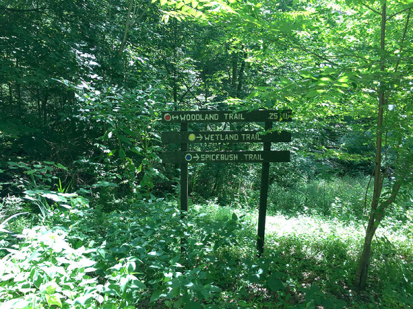 watkins_trails